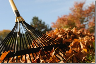 Post image for Your Gardening Body: How to Rake and Sweep Without Strain or Pain