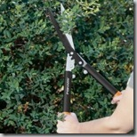 Fiskars PowerGear Hedger
