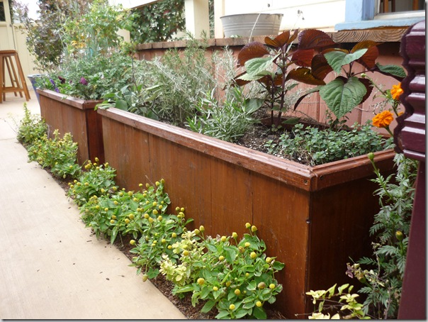 The Bottomless Planter Box from Outerior Decor | North Coast Gardening