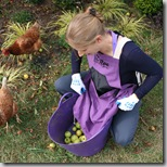 Post image for The Roo Weeding and Harvesting Apron
